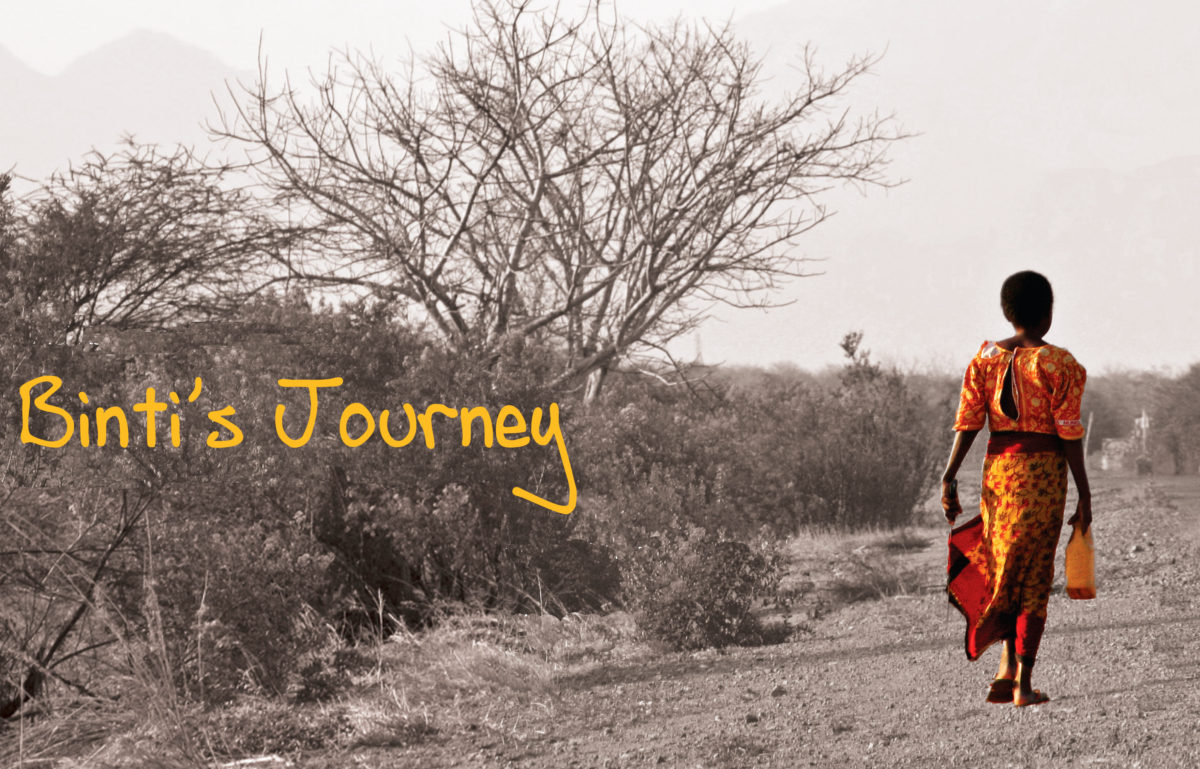 Binti's Journey 2009_poster_image